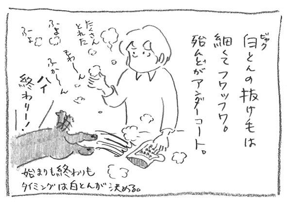 3-0606軽フワ