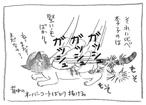 4-0606李子堅い