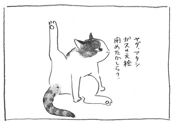 6-0607ヤダアタシ