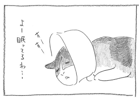 3-0609よー寝てる