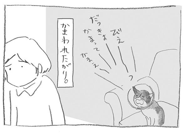 11-0609構って