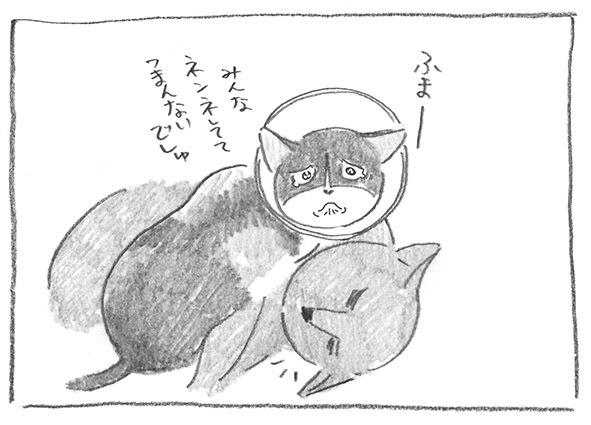 4-0610ネンネ