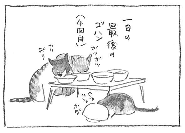 1-0612食事