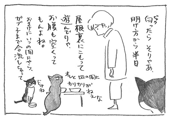2-0616お腹すく