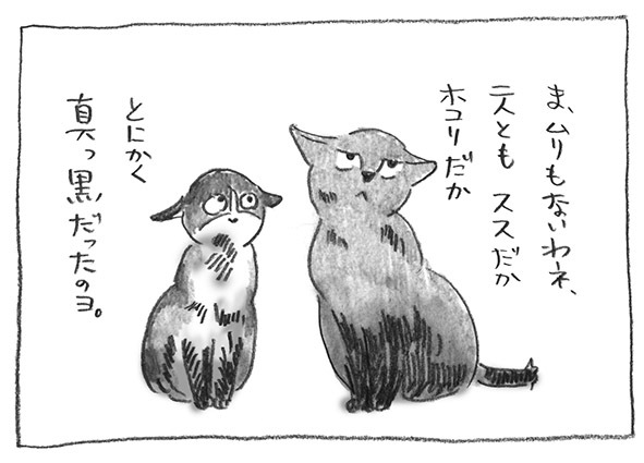 6-0616真っ黒