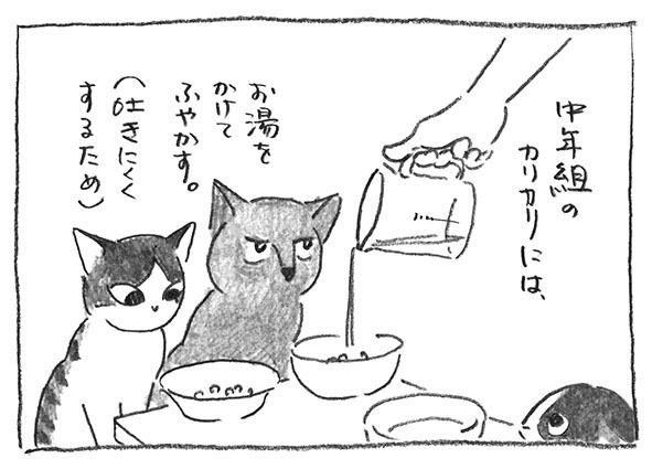 1-0617ふやかす