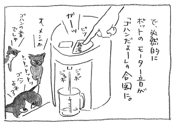 2-0617合図