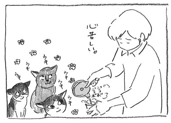 5-0617心苦しい