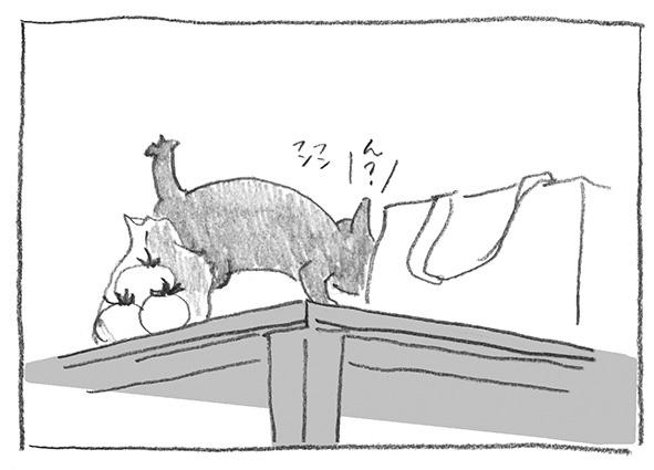 5-0618嗅ぐ