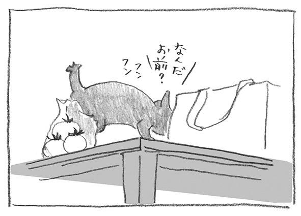 6-0618なんだお前