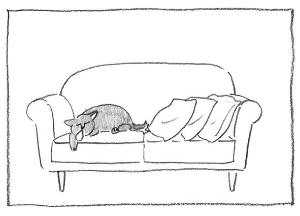 1-0619白寝てる