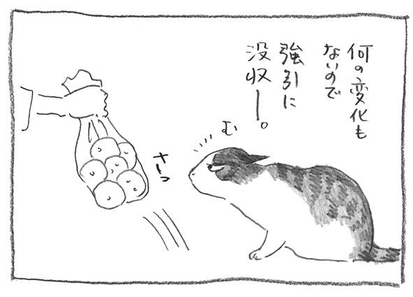 3-0621没収