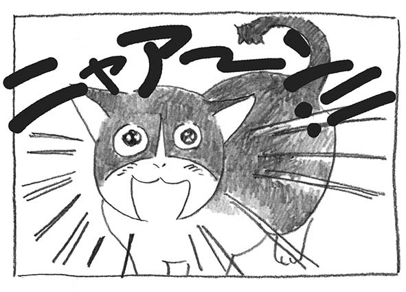 10-0625ニャ〜ン!