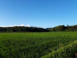 【写真】青空の下に広がる農園前の田んぼと遠くに見える三舟山