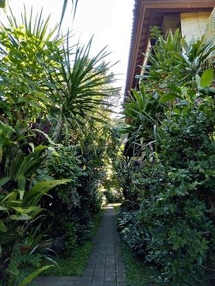 garden20.jpg