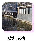 高瀬川花筏