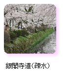 銀閣寺道(疎水)