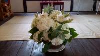 イベント 白紫陽花