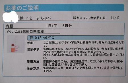 2019-04-11-09.jpg