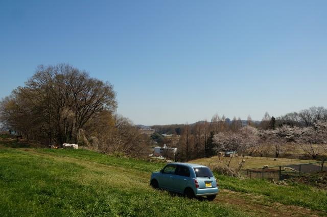 磯沼牧場の昼