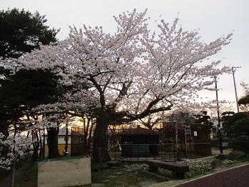 417hiyoriyama-2.jpg