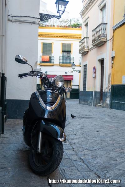 2019-01スペイン・イタリア視察215