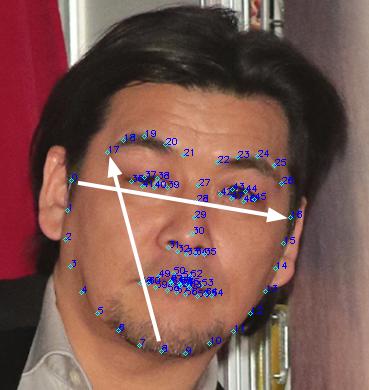 OpenCVでランドマーク検出2
