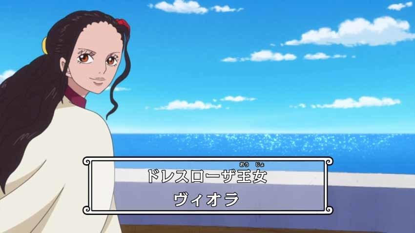 ワンピース ヴィオラ アニメ 879話
