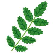 plant_leaf_sansyou.png