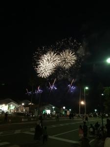和歌山マリーナシティ20190505008