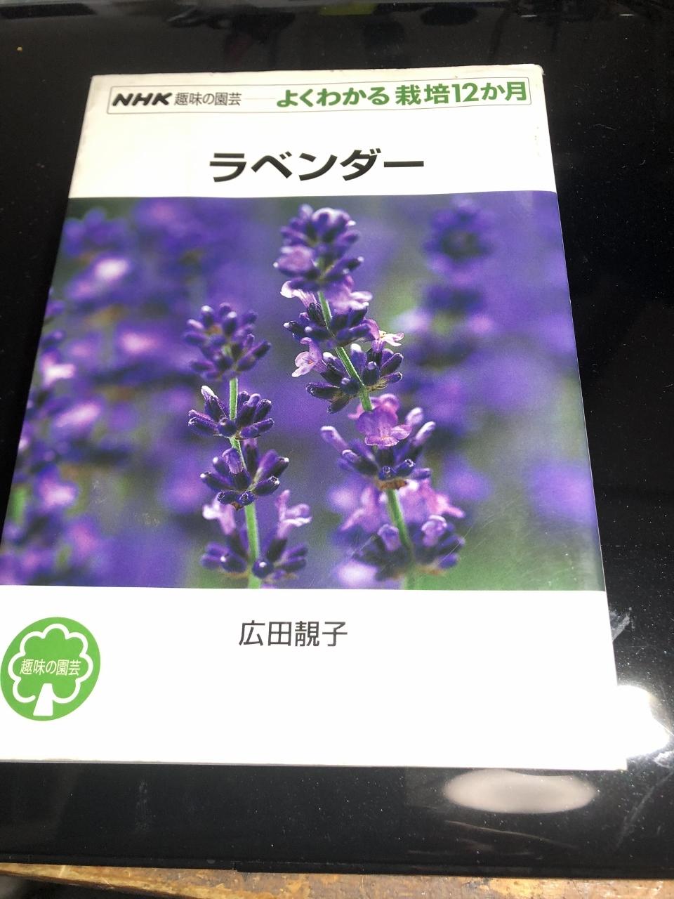 IMG_1865 (1280x960)