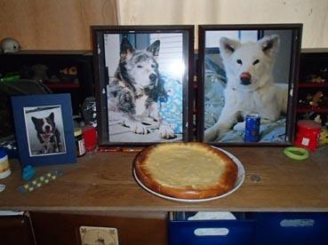 3:1ケーキ