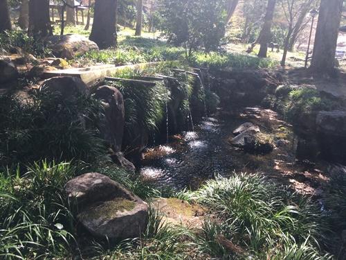 藤垈の滝17