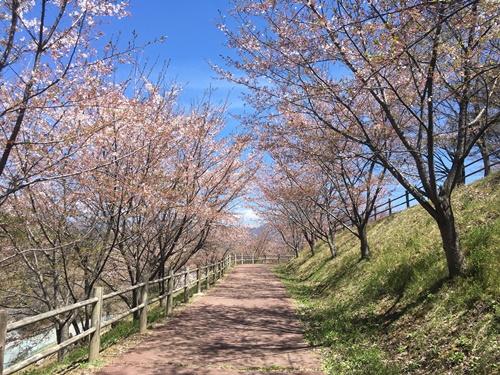 敷島公園17