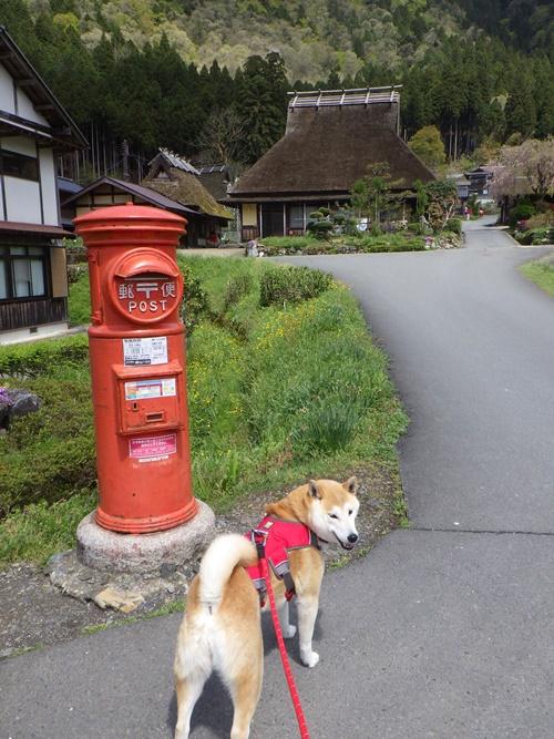 【京都】美山かやぶきの里