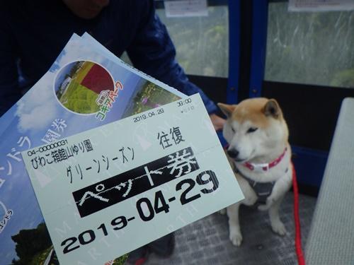 【滋賀県】びわこ箱館山ゆり園(ゴンドラで空中散歩&ドッグラン)