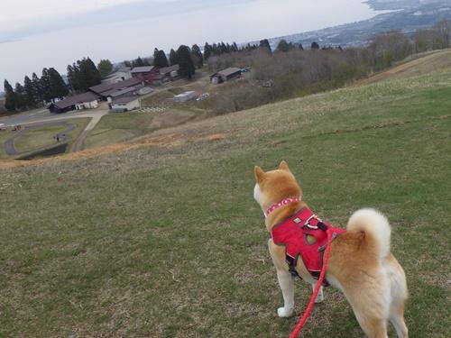 箱館山スキー場27