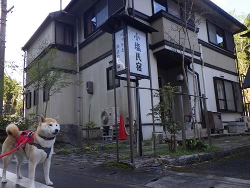 【京都】ペットと泊まれる宿 小塩民宿