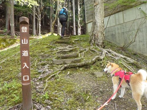 【京都】花背リゾート山村都市交流の森を散策