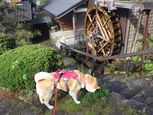 【岐阜県】馬籠宿を散策(馬籠宿下入口→馬籠峠頂上まで)