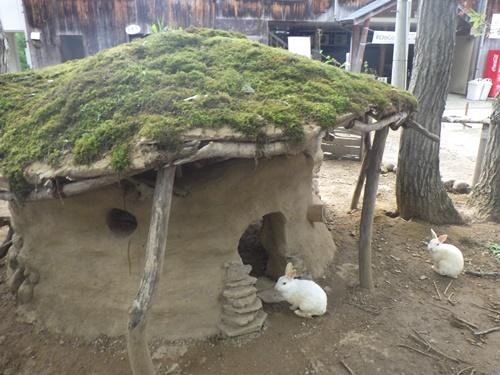 小国森林公園キャンプ場8