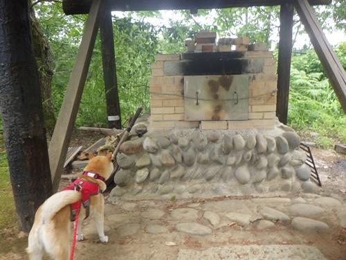 小国森林公園キャンプ場19
