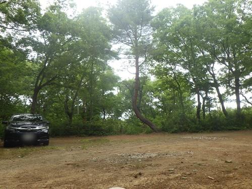小国森林公園キャンプ場16