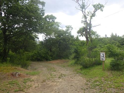 小国森林公園キャンプ場21