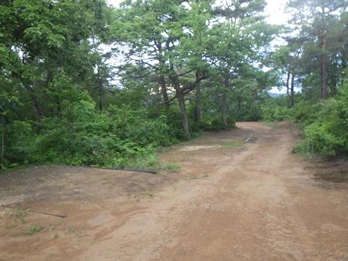 小国森林公園キャンプ場23
