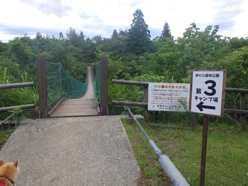 小国森林公園キャンプ場31