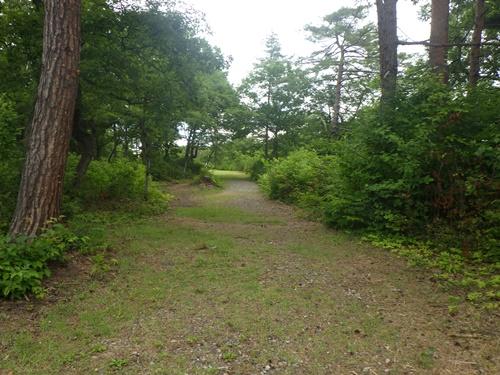 小国森林公園キャンプ場33