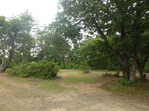 小国森林公園キャンプ場36