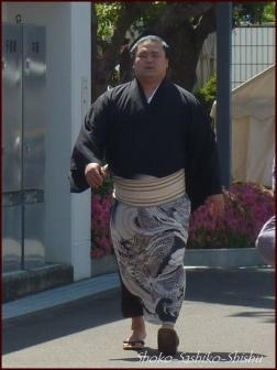 20190606 力士 4  相撲5月場所