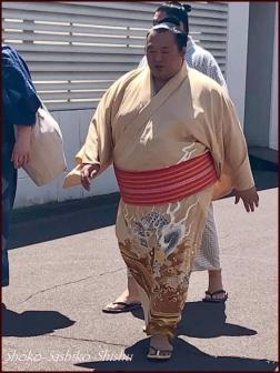 20190606 力士 12  相撲5月場所